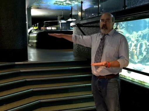 Les reportages de l'aquarium